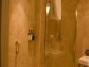 ap-griff-shower